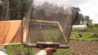 Роевня для пчел - за пару часов.