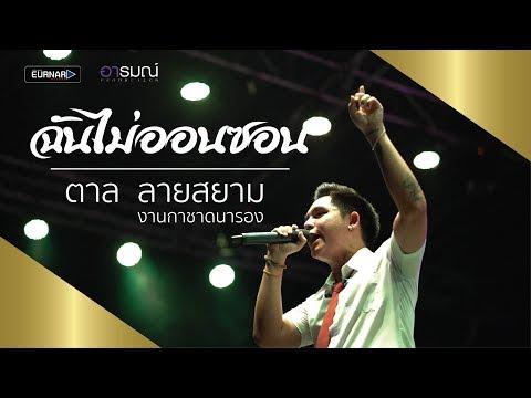 ฉันไม่ออนซอน - เนม สุรพงศ์   Cover By ตาล ลายสยาม [Official Live]