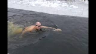 Праздничный заплыв в клубе Днепровские Моржи на св  Николая Чудотворца 18 12 16