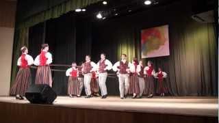 Cēsu deju apriņķa.deju kolektīvu skate Cēsu CATA kultūras namā 2.03.2013 -00905