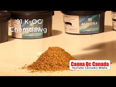 UNBOXING AURORA CANNATONIC SOUR DIESEL CONFIDENTIAL 91 OG CHEMDAWG