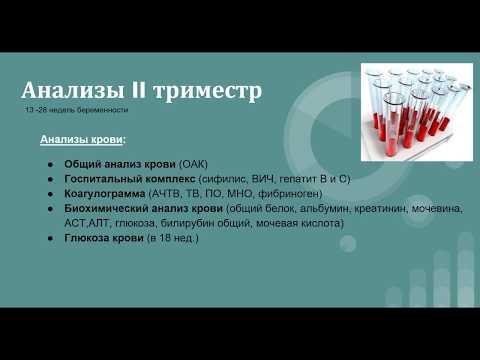 АНАЛИЗЫ 2 ТРИМЕСТРА беременности. УЗИ, скрининг, допплер