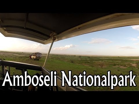Kenya Afrika - Safari through Amboseli National Park, Kilimanjaro [HD]