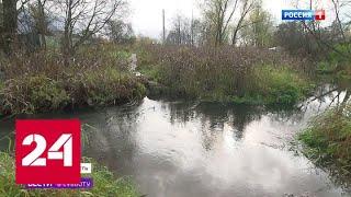 В подмосковной деревне Деденево бесследно исчез мост - Россия 24