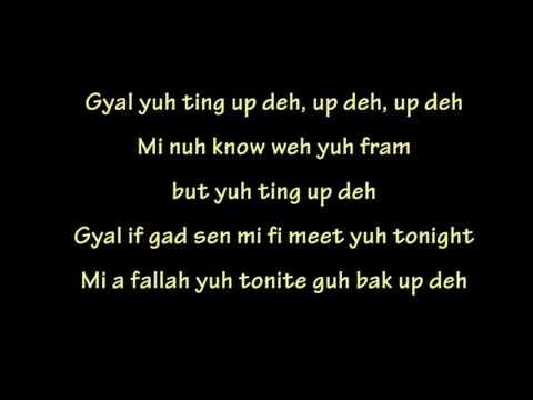 Charly Black -  Party Animal (Lyrics)