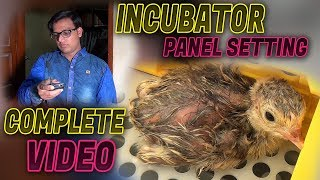 How to use  Eggs Incubator & Panel setting 2018 (Jamshed Asmi Informative Channel) In Urdu Hindi