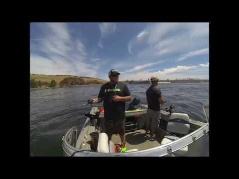 walleye fishing on the columbia river umatilla oregon