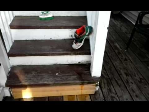 How to clean mesh on kd7s (2)