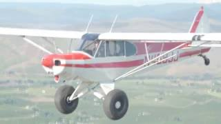 Used 1990 Pa-18 Super Cub For Sale