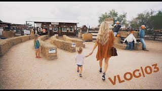 Pumpkins and Corn Mazes and Horses, Oh My! - Vlog|03