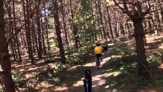 Dryland Mushing - 9 Year-old Bikejoring With Doberman Pinscher