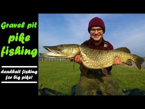 PIKE FISHING|catching BIG Gravel Pit PIKE!