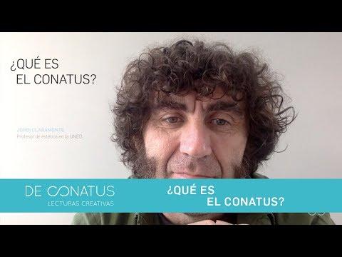 ¿Qué es el Conatus ?