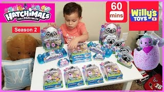 Hatchimals CollEGGtibles Season 2 Toy Review #Hatchimals Surprise Eggs - Willy