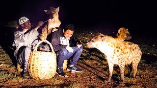 Face-To-Face with a GIANT HYENA in Ethiopia + Huge Ethiopian Street Food Tour in Harar!