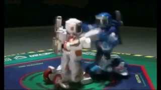 2.4G RC control boxing robot