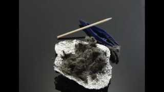 Why Dissect Owl Pellets