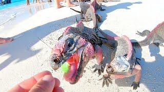 Feeding RARE Endangered MINI-DINOSAURS Found on Deserted Island!!!