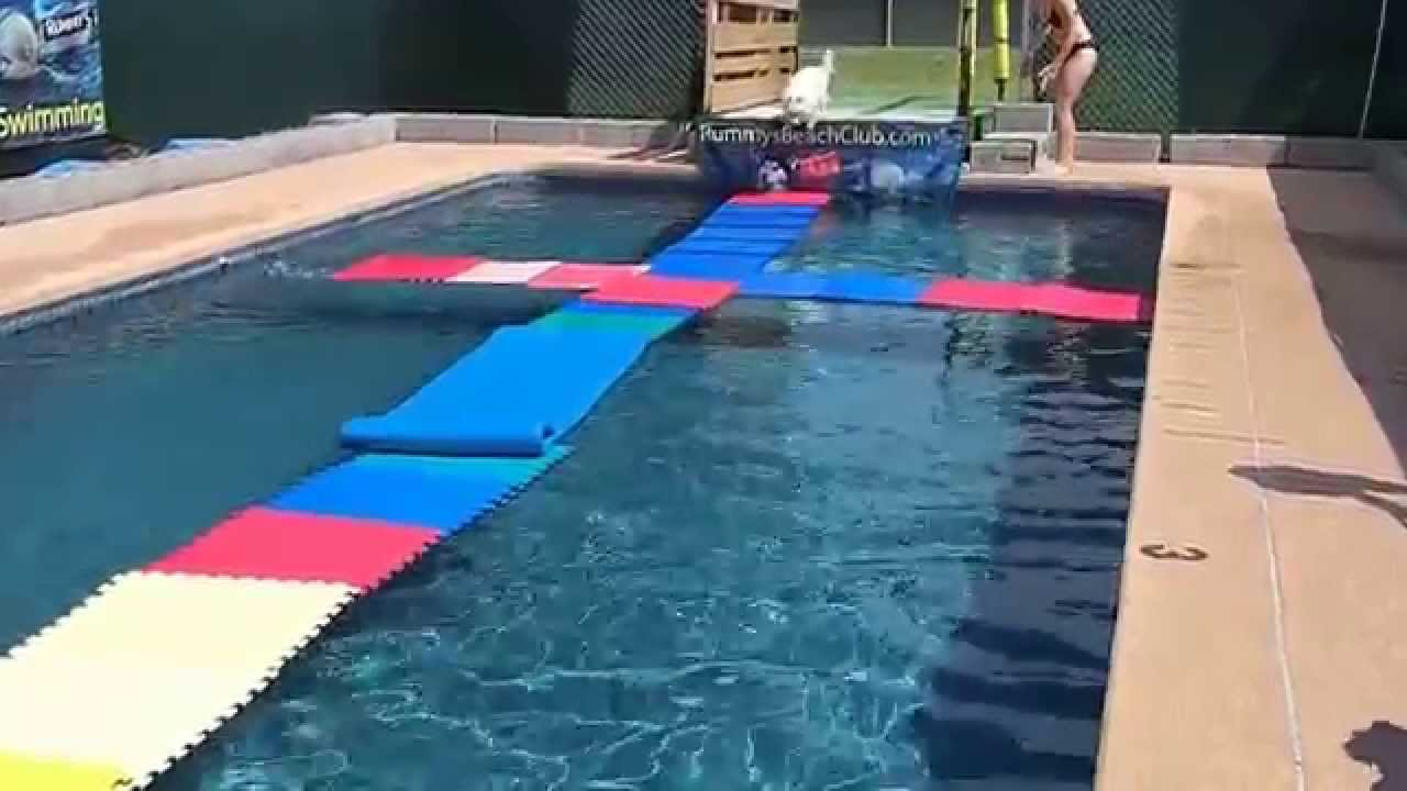 Pool Floats For Dogs The Best Dog 2018
