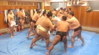2012年12月22日、伊勢ケ浜部屋で行われた綱打ちの様子。