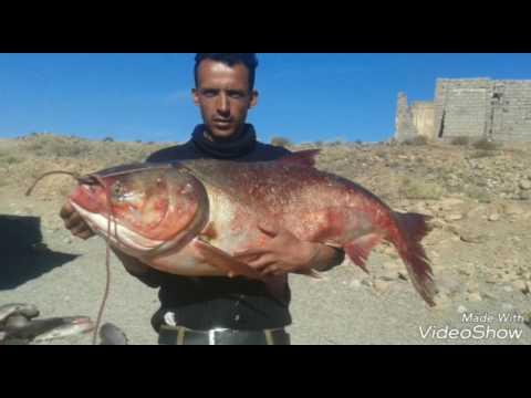 Les meilleurs pêcheurs de ouarzazate Saïd el9arziz
