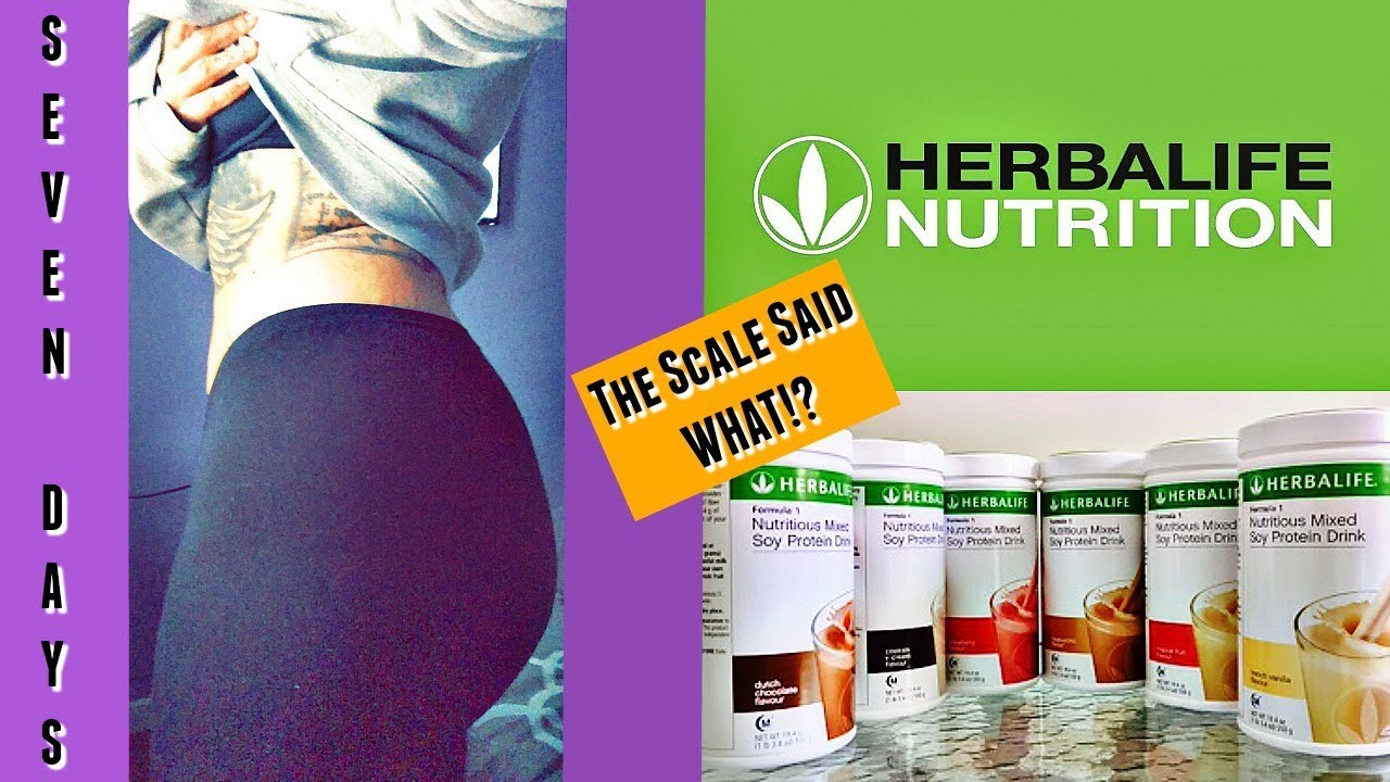 How To Lose Weight Fast Herbalife Day 1 Weigh In The Scale Said What