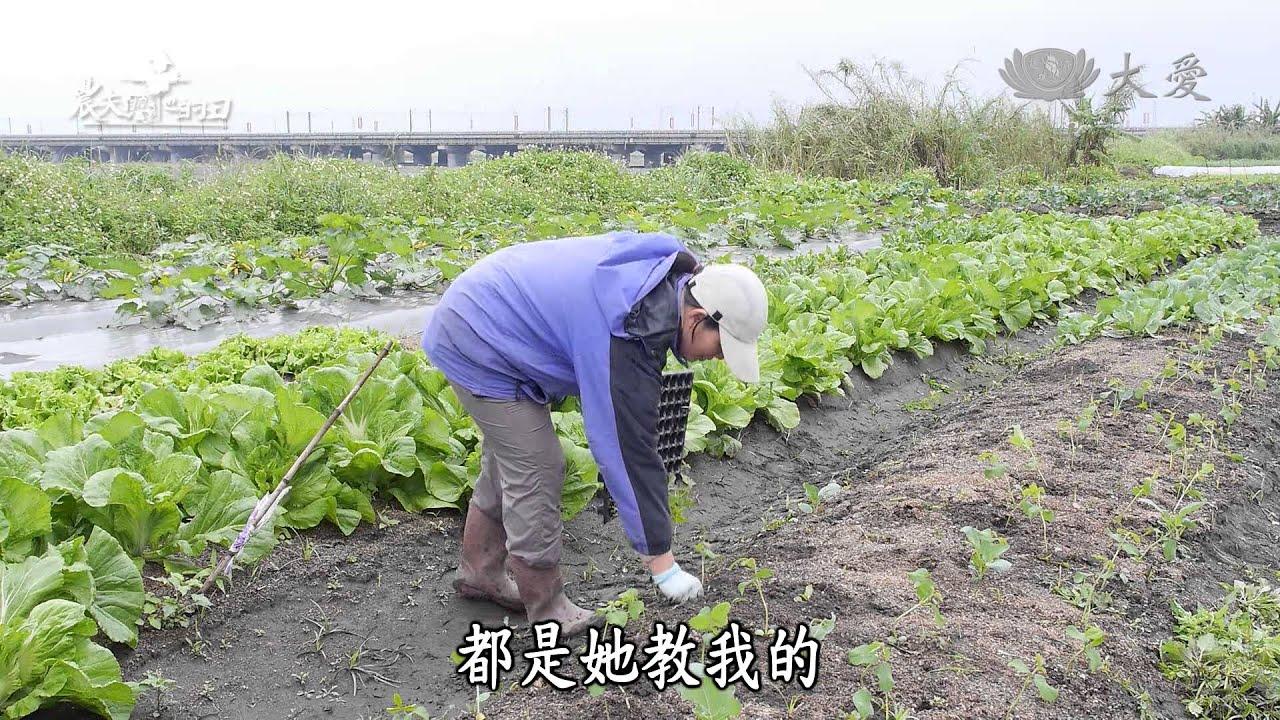 【農夫與他的田】20140315 - 賴嬌燕的有機農場夢