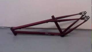 Dobermann Pinscher Frame / Bike Check