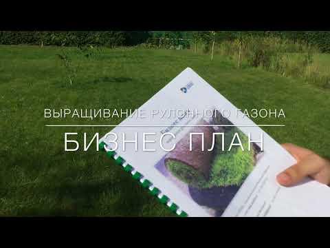 Выращивание газонов бизнес план разделочная доска бизнес план