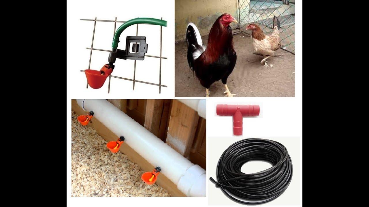 Bebederos autom ticos para aves tipo charola con clip for Tipos de estanques para acuicultura