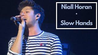 "Niall Horan - ""Slow Hands"" (LIVE at B96 Summer Bash 2017 )"