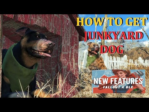 How To Get Junkyard Dogs Wasteland Workshop Fallout 4