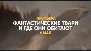 Музыка из рекламы СТС — Фантастические твари и где они обитают (2018)