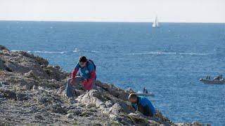 De la Côte Bleue à Cassis, ils ont nettoyé le littoral de ses déchets