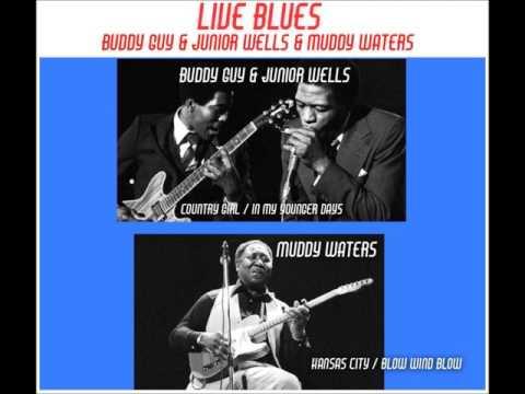 LIVE BLUES..BUDDY GUY / JUNIOR WELLS / MUDDY WATERS