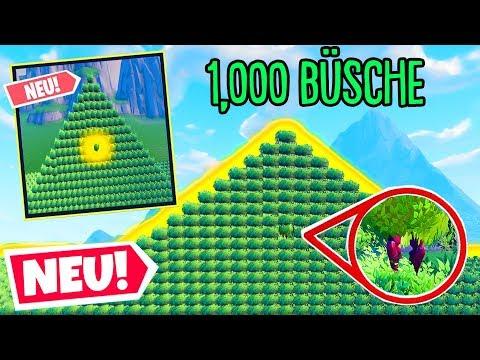 1000 BÜSCHE, ABER nur 1 RICHTIGER!