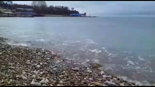 #АНАПА - МАЛАЯ БУХТА!!! Лебеди, чайки, утки 30.12.2018