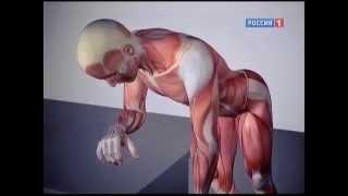 видео 3 упражнения на снятие мышечных зажимов рук, плеч (шеи), ног