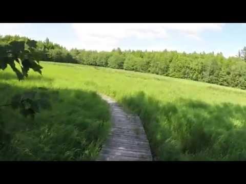 Kejimkujik National Park - Walking Rogers Brook Trail