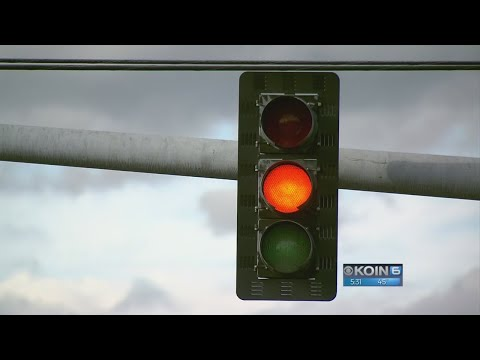 Michael Berry - More Proof Red Light Cameras Are Stupid