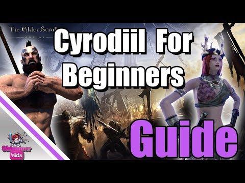 Elder Scrolls Online Cyrodiil Guide