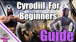 ESO: Ultimate Beginner's Guide to Cyrodiil