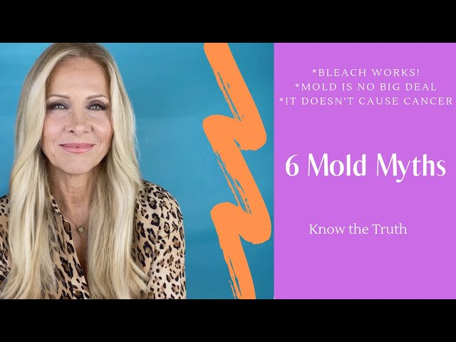 6 Mold Myths - what you need know about toxic mold!