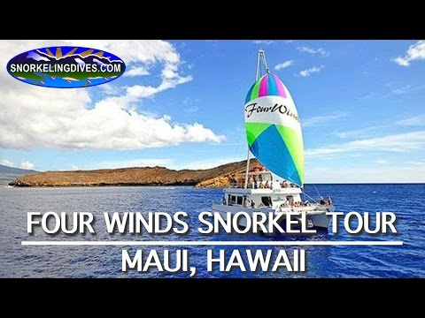 Four Winds Molokini Snorkel Tour | Maui
