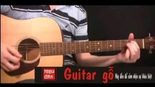 Heart Of Gold - guitar - guitargo.com.vn