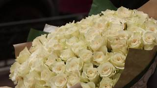 101 белая роза - обзор букета - Улица Роз