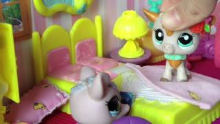 Minişler; Yaşasın Haftasonu Tatili! / Minişler Cupcake Tv