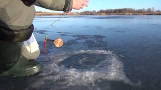 Зимняя рыбалка январь  2015