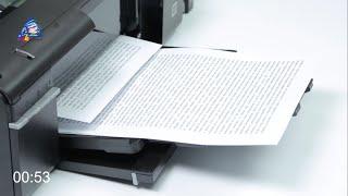 epson L800: тест на скорость печати текста. Режим