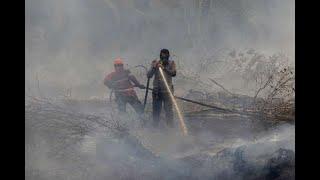 После сильнейших морозов, Кентукки в США уходит под воду. Индонезия в ОГНЕ !!! Горят торфянники.